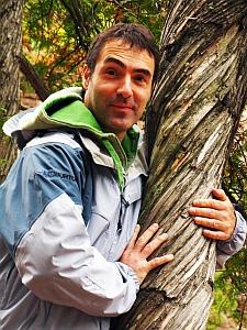 o spiral tree-hug